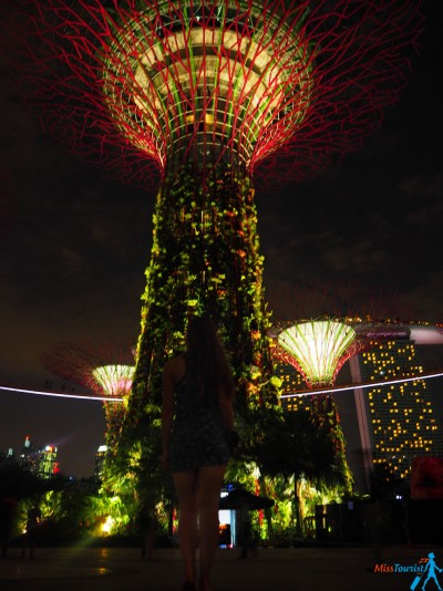 SUPERTREE GROVE LIGHT SHOW
