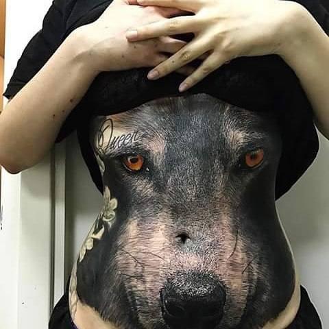 dog beautiful stomach tattoos