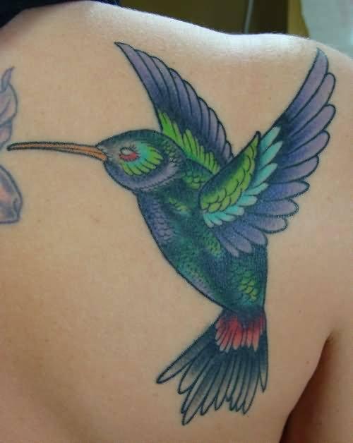 bird tattoo on back shoulder