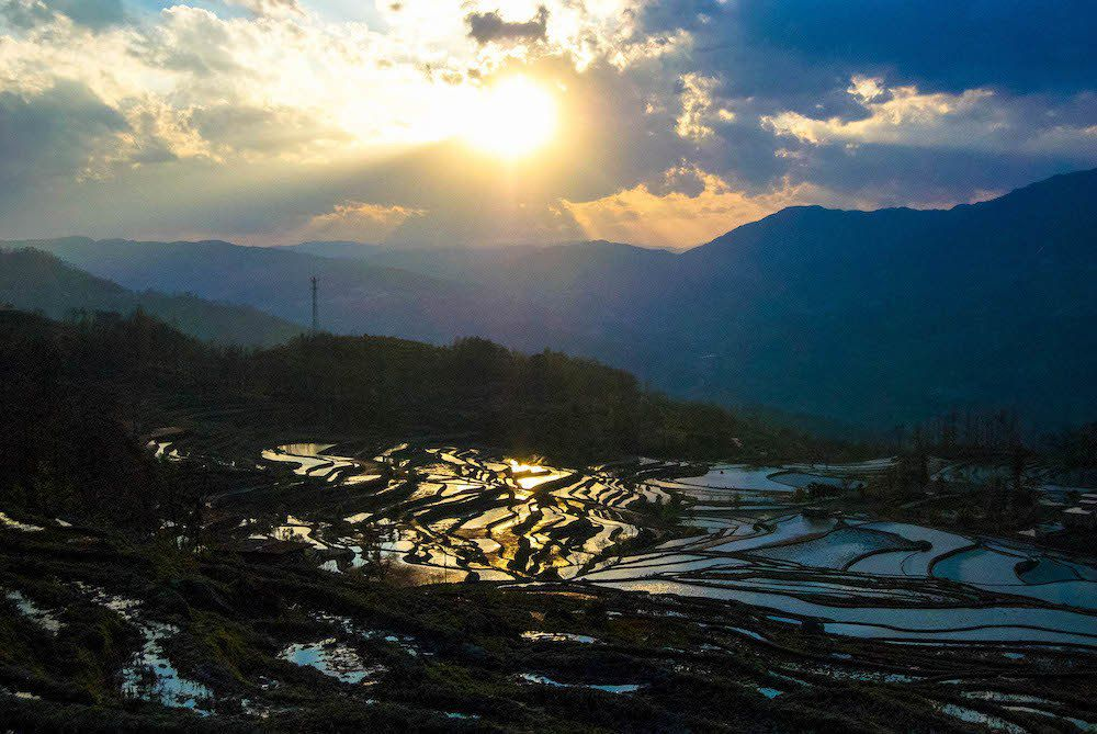 the Rice Terraces in Yunnan, China