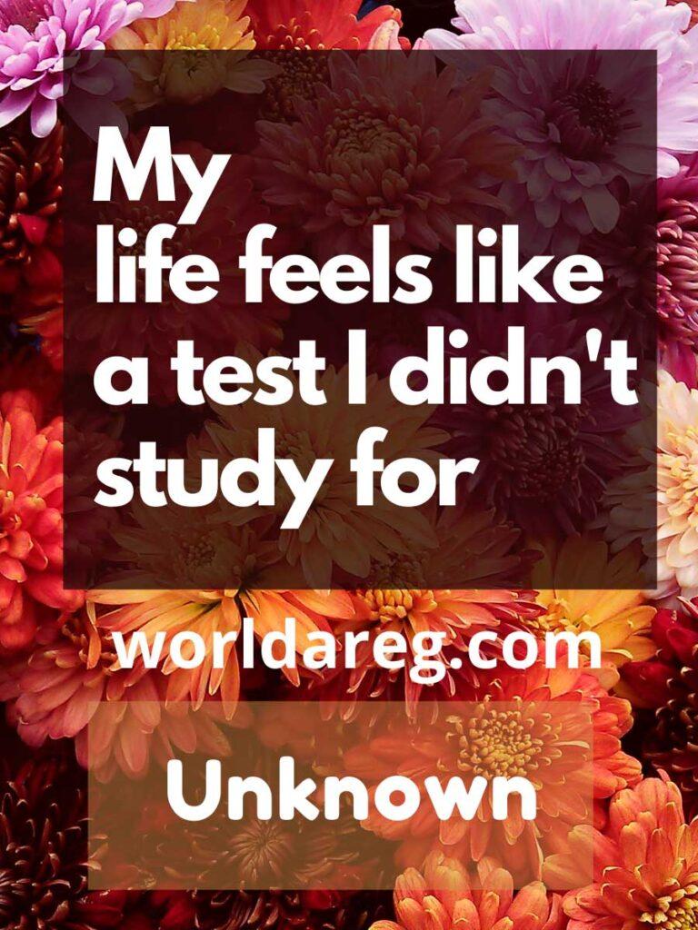 My life feels like a test