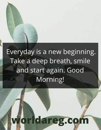 Everyday is a new beginning best words