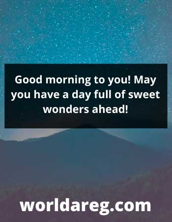 have a nice day full of sweet wonders sayings