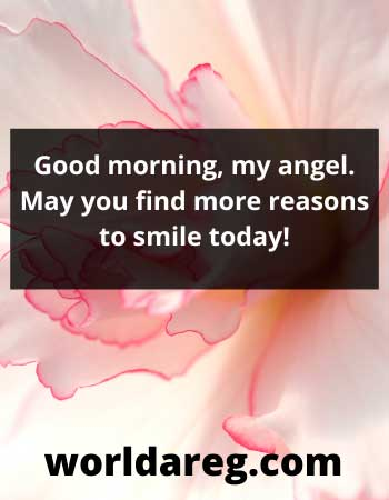 cool good morning my angel quote images