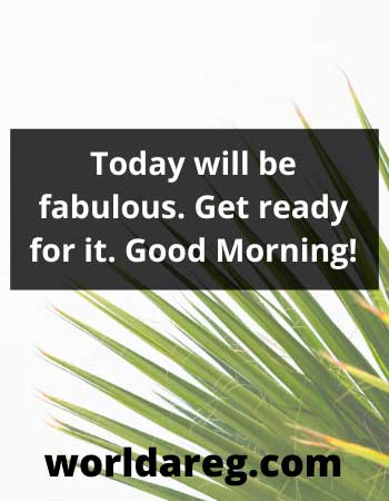 Today will be fabulous good morning blessings