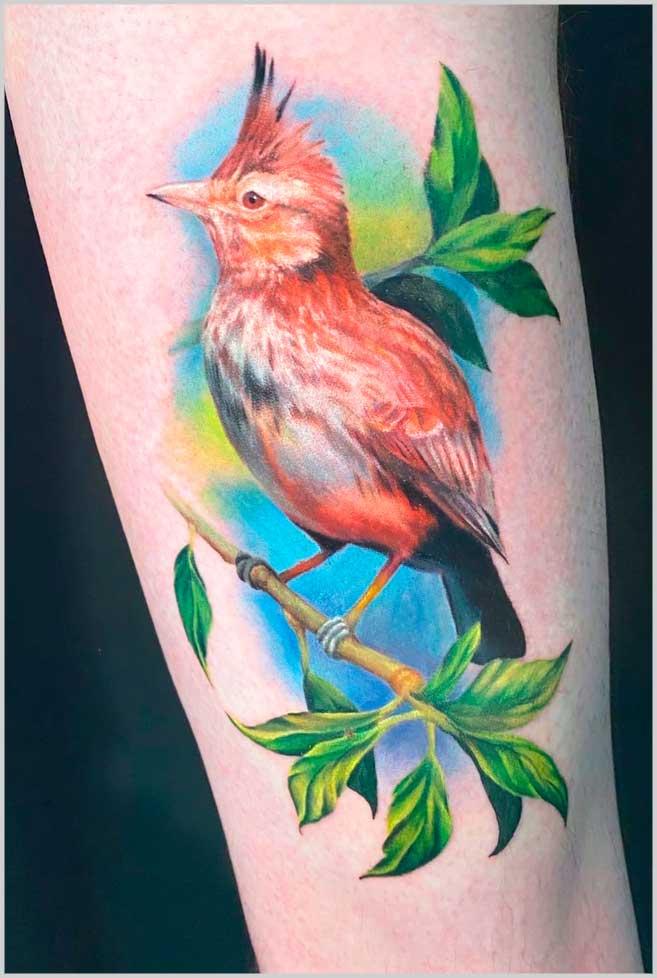 Bird unique small tattoos for women colorful design