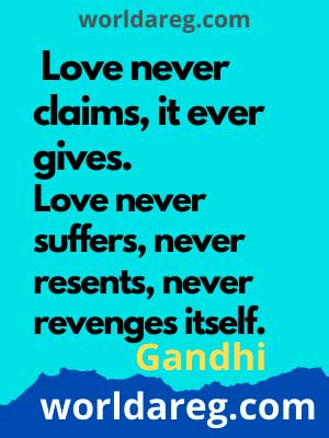 falling in love quotes for him never claims